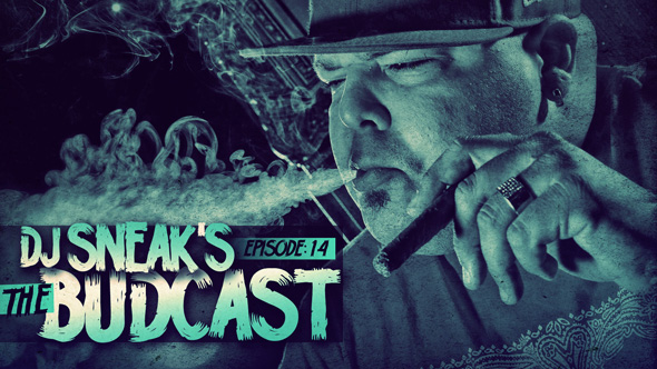 DJ Sneak - The Budcast 14
